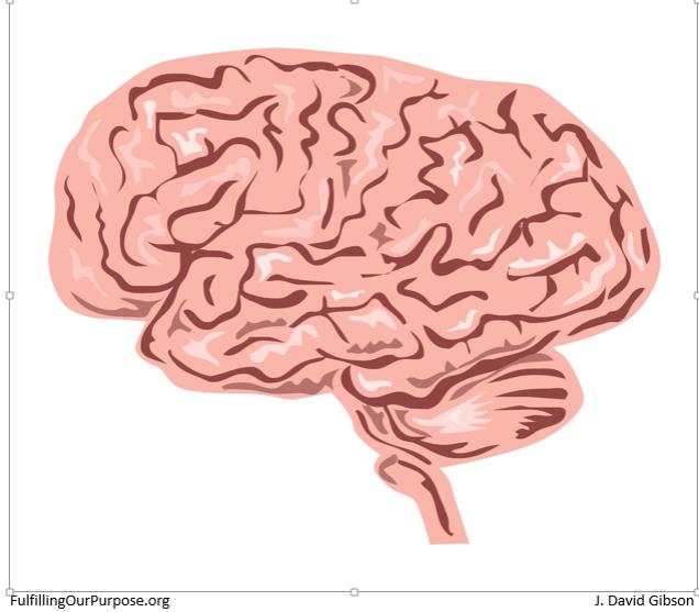 brain-tagged