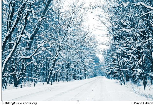 snowy-road-tagged