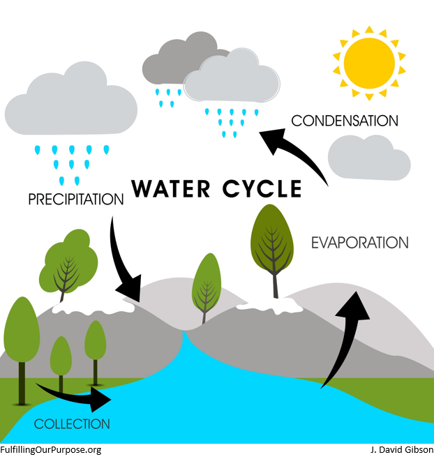 water-cycle-tagged