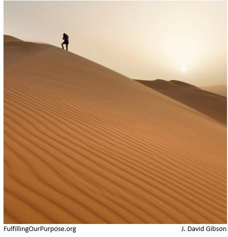 desert-tagged