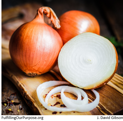 onions-tagged